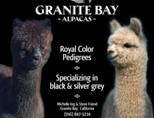Granite Bay Alpacas