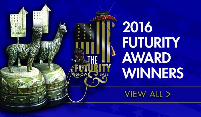 2016_fut_awardssliderframe