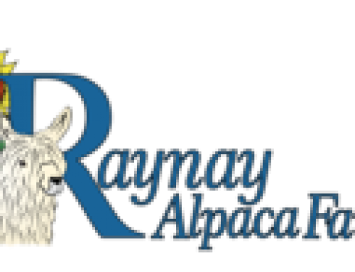 Raynay Alpacas