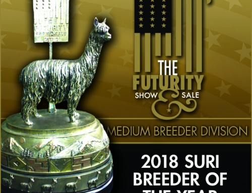 2018 Suri Breeder of the Year Medium Farm Division