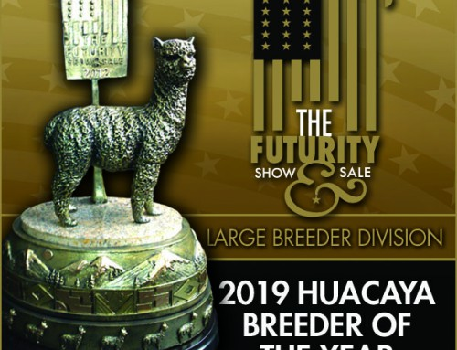 2019 Huacaya Breeder of the Year Large Farm Division