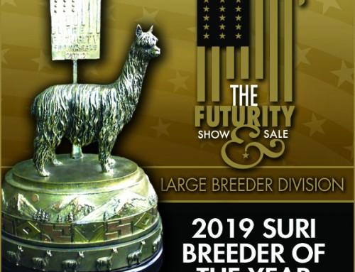 2019 Suri Breeder of the Year Large Farm Division